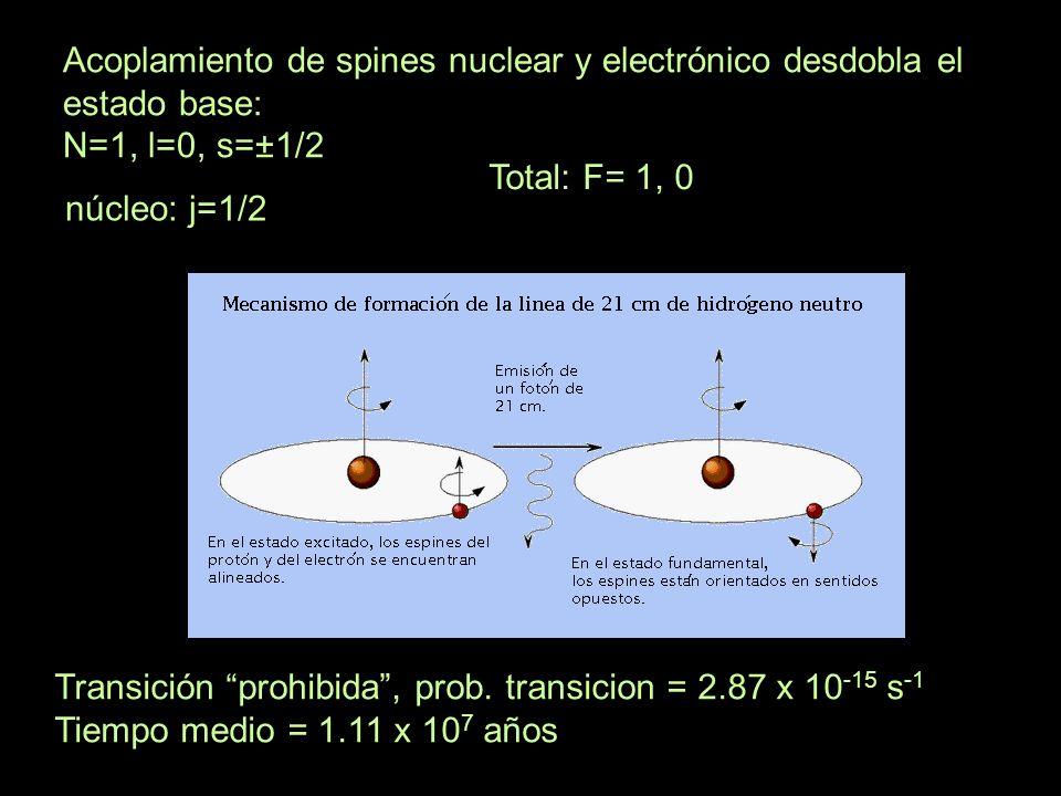 Acoplamiento de spines nuclear y electrónico desdobla el estado base: N=1, l=0, s=±1/2 núcleo: j=1/2 Total: F= 1, 0 Transición prohibida, prob. transi