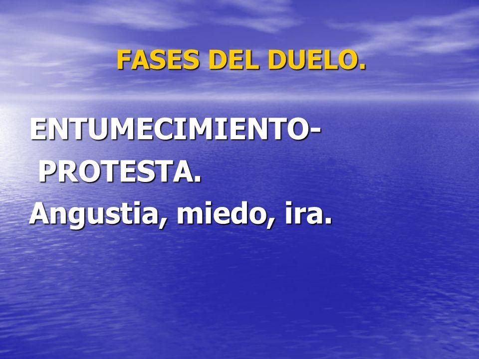 FASES DEL DUELO. ENTUMECIMIENTO- PROTESTA. PROTESTA. Angustia, miedo, ira.