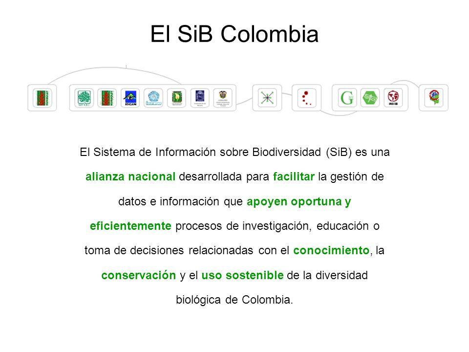 El Sistema de Información sobre Biodiversidad (SiB) es una alianza nacional desarrollada para facilitar la gestión de datos e información que apoyen oportuna y eficientemente procesos de investigación, educación o toma de decisiones relacionadas con el conocimiento, la conservación y el uso sostenible de la diversidad biológica de Colombia.