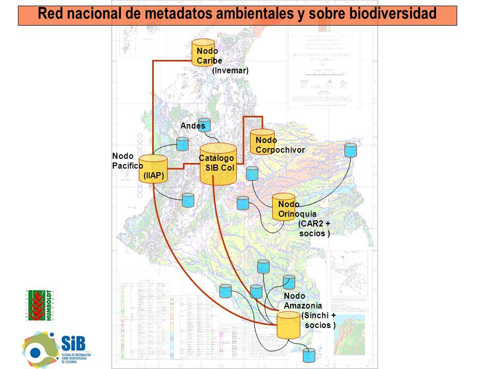 Nodo Pacífico (IIAP) Nodo Caribe (Invemar) Nodo Amazonia (Sinchi + socios ) Catálogo SIB Col Nodo Orinoquia (CAR2 + socios ) Nodo Corpochivor Red nacional de metadatos ambientales y sobre biodiversidad Andes