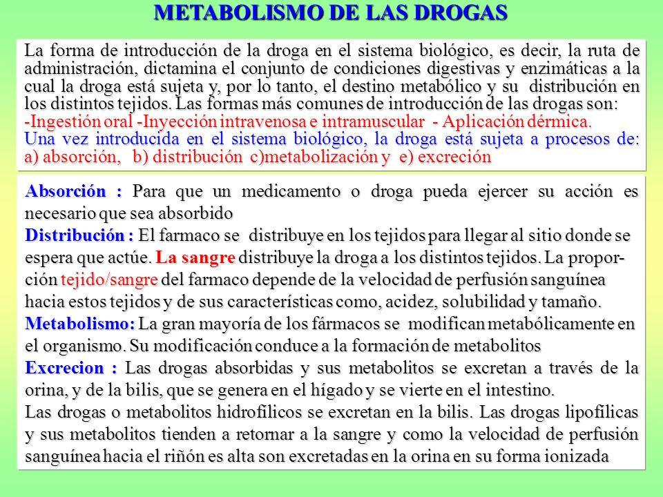 La forma de introducción de la droga en el sistema biológico, es decir, la ruta de administración, dictamina el conjunto de condiciones digestivas y e