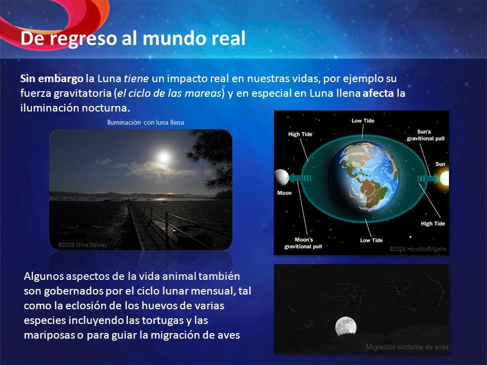 Sin embargo la Luna tiene un impacto real en nuestras vidas, por ejemplo su fuerza gravitatoria (el ciclo de las mareas) y en especial en Luna llena a
