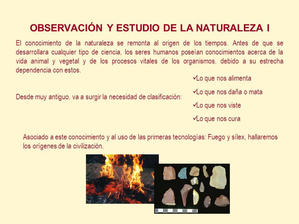 OBSERVACIÓN Y ESTUDIO DE LA NATURALEZA I El conocimiento de la naturaleza se remonta al origen de los tiempos.