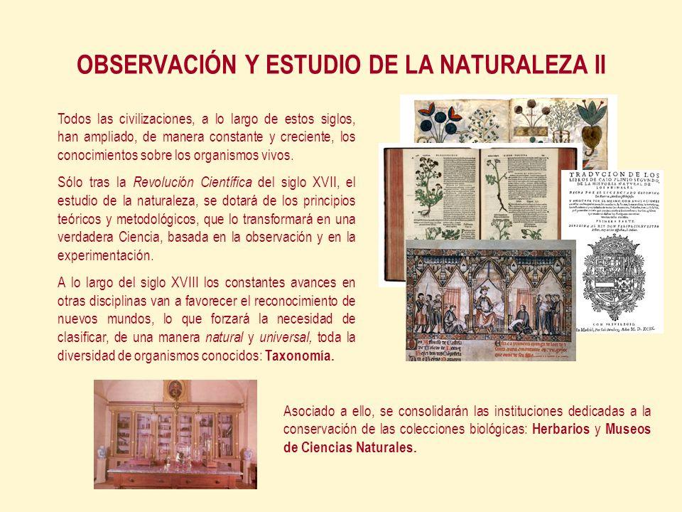 OBSERVACIÓN Y ESTUDIO DE LA NATURALEZA II Todos las civilizaciones, a lo largo de estos siglos, han ampliado, de manera constante y creciente, los conocimientos sobre los organismos vivos.