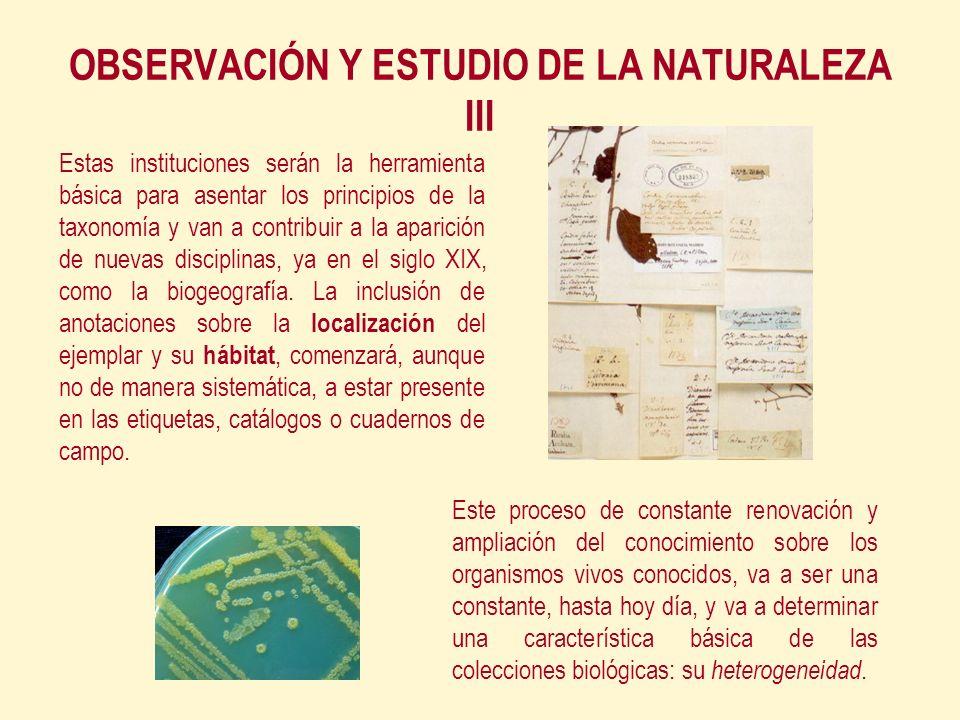 Este proceso de constante renovación y ampliación del conocimiento sobre los organismos vivos conocidos, va a ser una constante, hasta hoy día, y va a determinar una característica básica de las colecciones biológicas: su heterogeneidad.