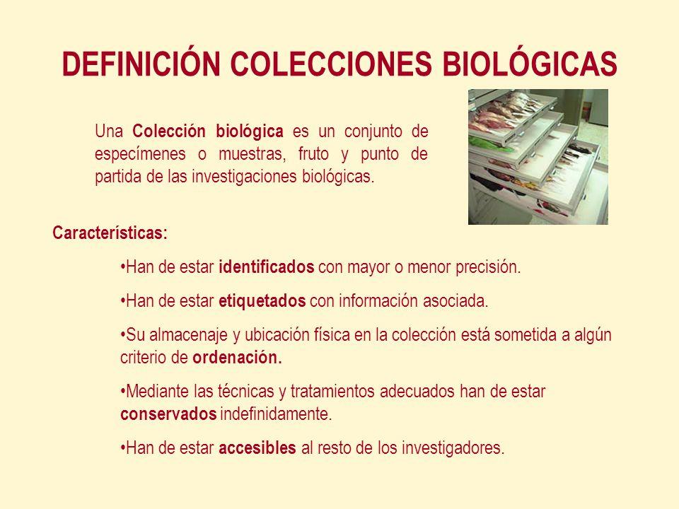 DEFINICIÓN COLECCIONES BIOLÓGICAS Características: Han de estar identificados con mayor o menor precisión.