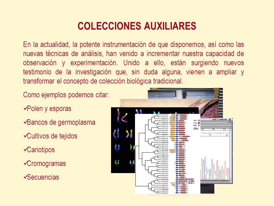 COLECCIONES AUXILIARES En la actualidad, la potente instrumentación de que disponemos, así como las nuevas técnicas de análisis, han venido a incrementar nuestra capacidad de observación y experimentación.