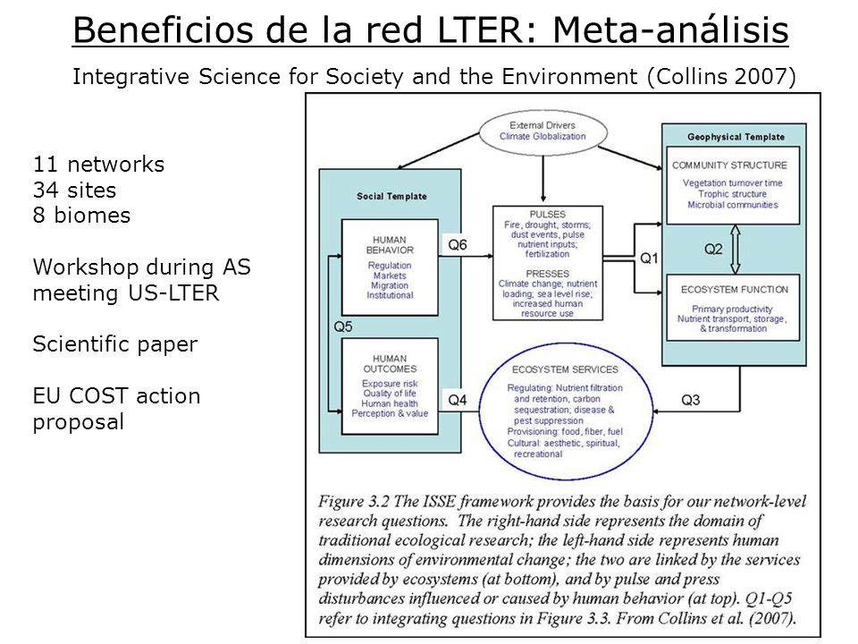 Beneficios de la red LTER: Meta-análisis Integrative Science for Society and the Environment (Collins 2007) 11 networks 34 sites 8 biomes Workshop dur