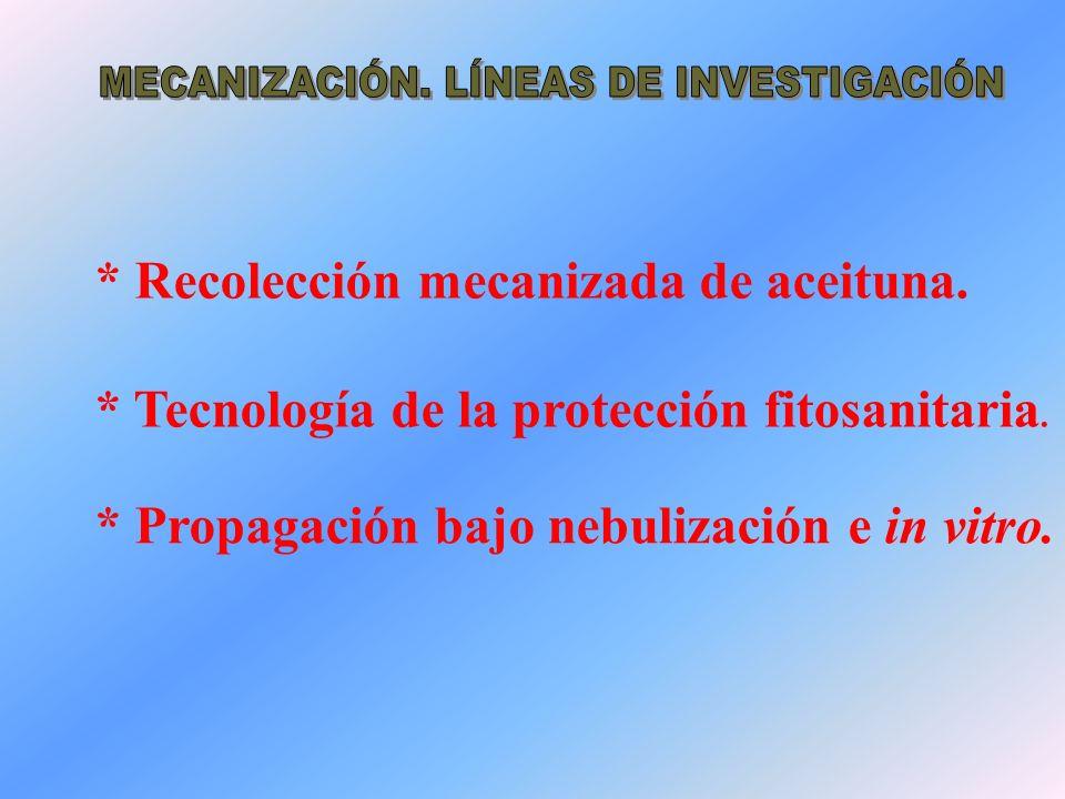 * Recolección mecanizada de aceituna. * Tecnología de la protección fitosanitaria. * Propagación bajo nebulización e in vitro.