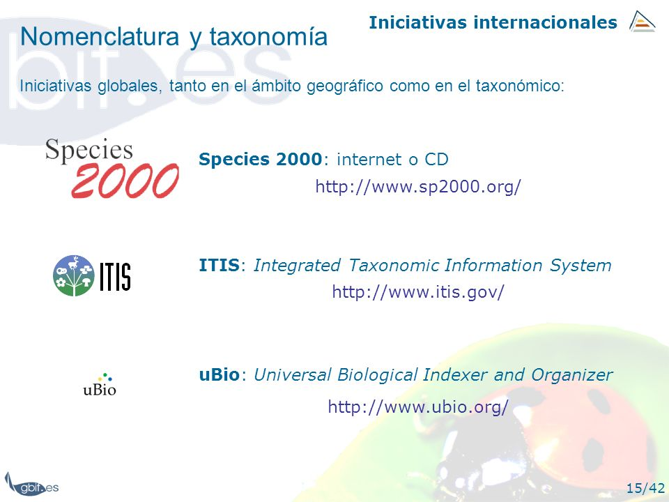 Iniciativas internacionales 15/42 Nomenclatura y taxonomía http://www.sp2000.org/ Species 2000: internet o CD ITIS: Integrated Taxonomic Information S