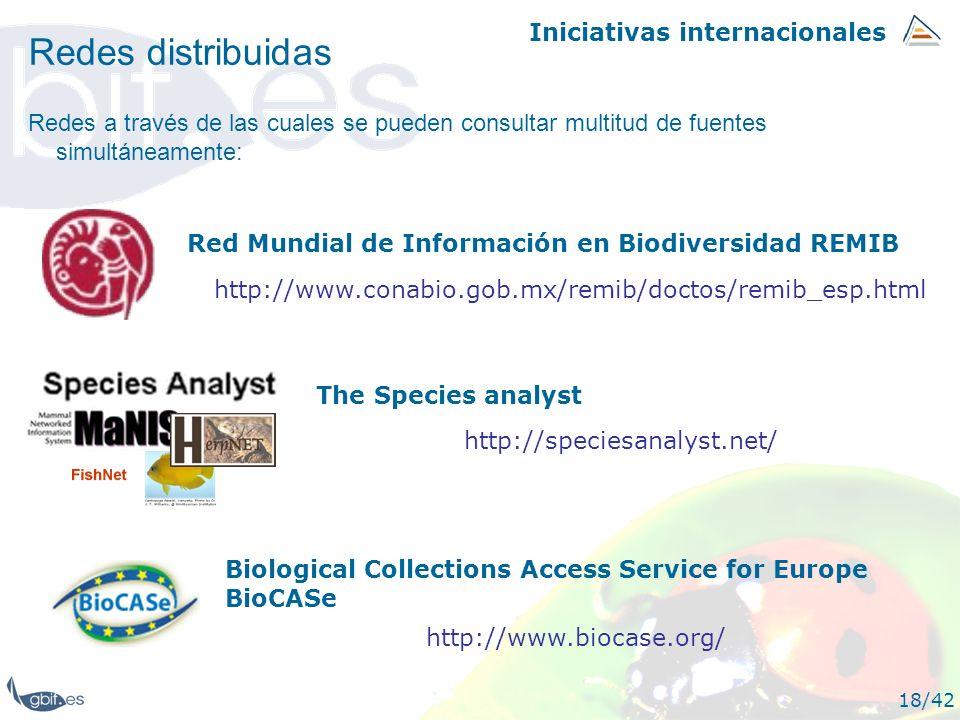Iniciativas internacionales 18/42 Redes distribuidas Redes a través de las cuales se pueden consultar multitud de fuentes simultáneamente: Red Mundial