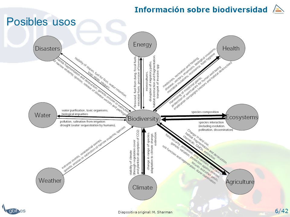 Índice 33/42 1.- La información sobre biodiversidad.