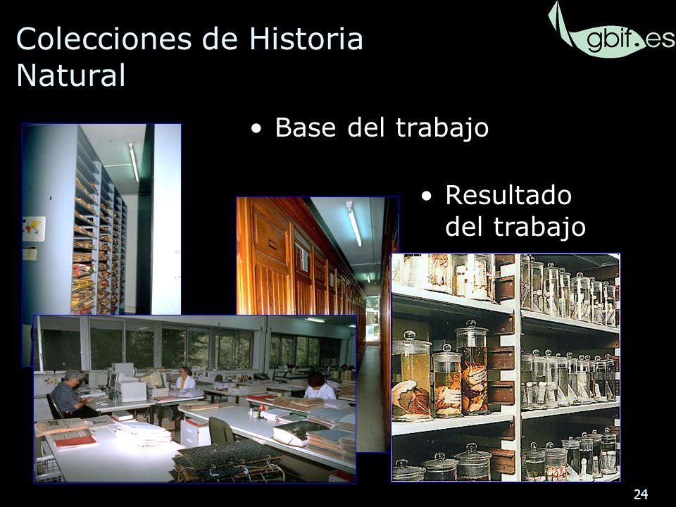 24 Colecciones de Historia Natural Base del trabajo Resultado del trabajo