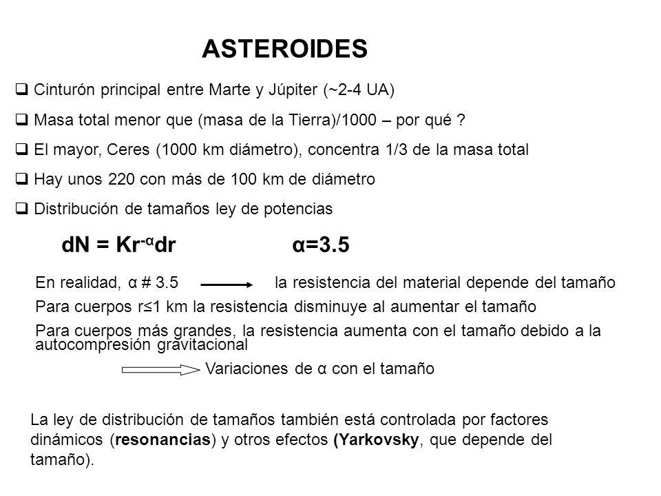 ASTEROIDES Cinturón principal entre Marte y Júpiter (~2-4 UA) Masa total menor que (masa de la Tierra)/1000 – por qué ? El mayor, Ceres (1000 km diáme