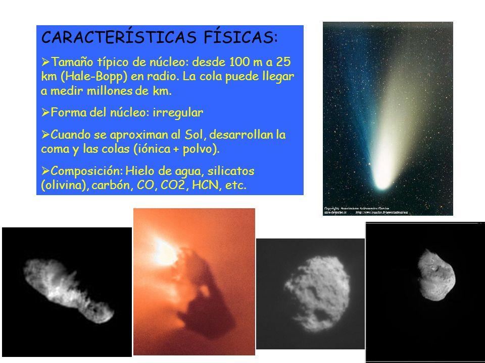 CARACTERÍSTICAS FÍSICAS: Tamaño típico de núcleo: desde 100 m a 25 km (Hale-Bopp) en radio. La cola puede llegar a medir millones de km. Forma del núc