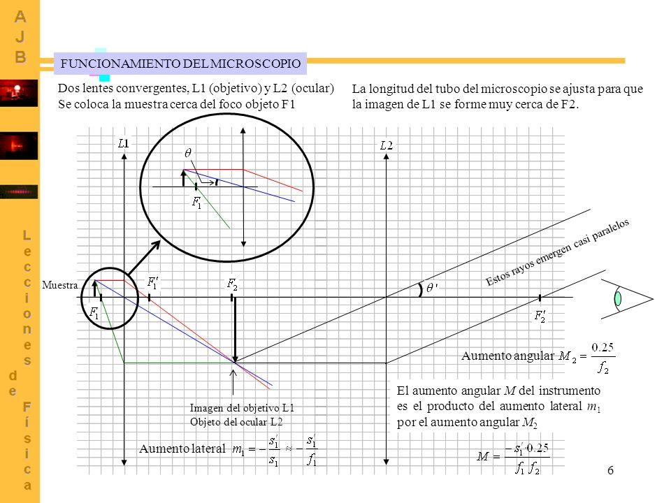 6 Imagen del objetivo L1 Objeto del ocular L2 FUNCIONAMIENTO DEL MICROSCOPIO Muestra Dos lentes convergentes, L1 (objetivo) y L2 (ocular) Se coloca la