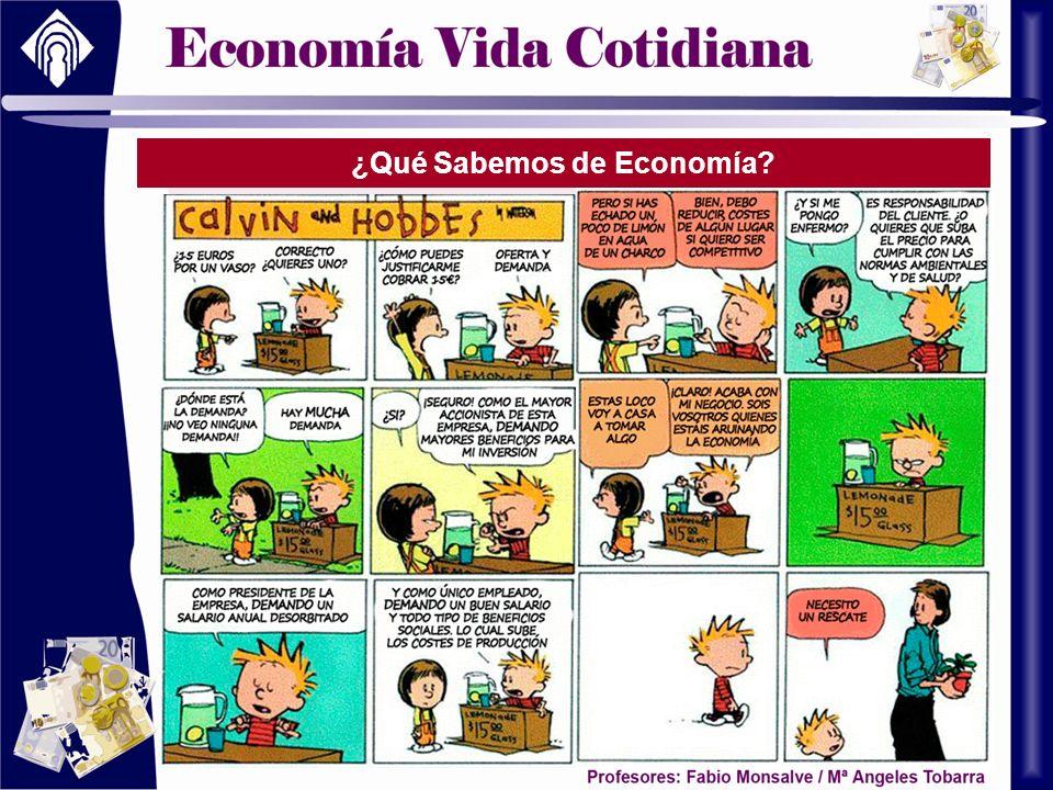 ¿Qué Sabemos de Economía?