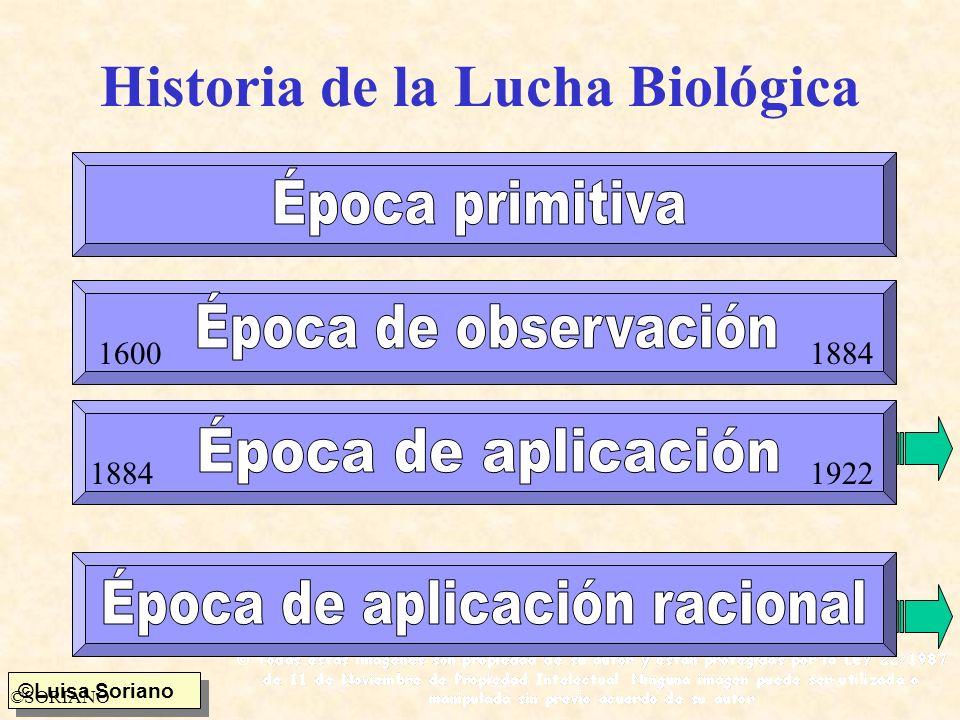 ©Luisa Soriano ©SORIANO Condiciones microclimáticas del país de origen Dependencia del insecto útil/insecto plaga Duración de los ciclos biológicos i.u./i.p.