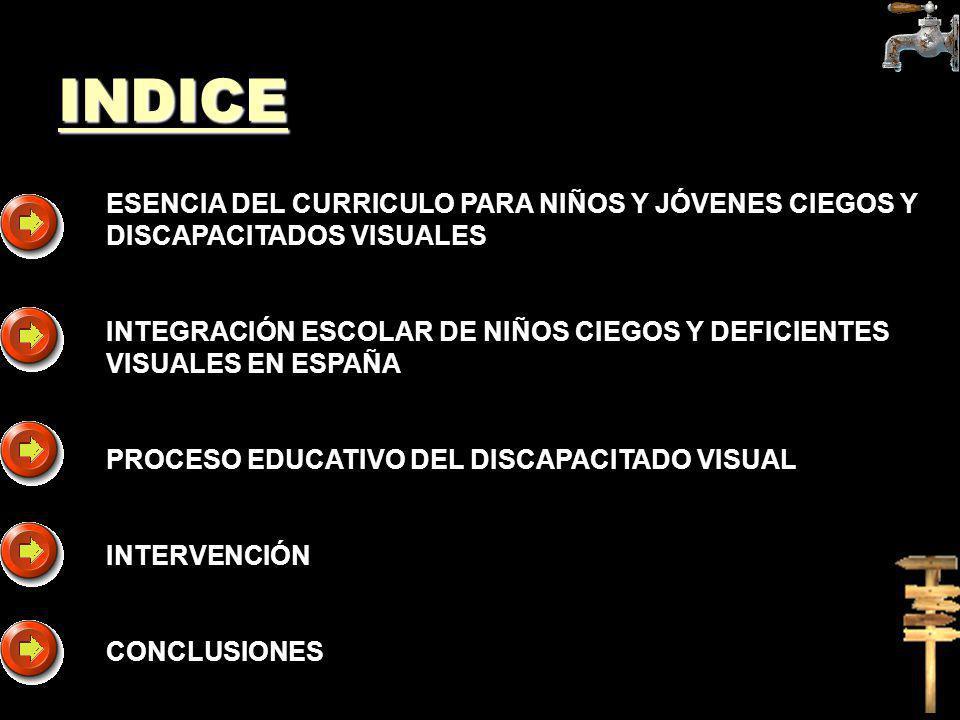 ESENCIA DEL CURRICULO PARA NIÑOS Y JÓVENES CIEGOS Y DISCAPACITADOS VISUALES INTEGRACIÓN ESCOLAR DE NIÑOS CIEGOS Y DEFICIENTES VISUALES EN ESPAÑA PROCE