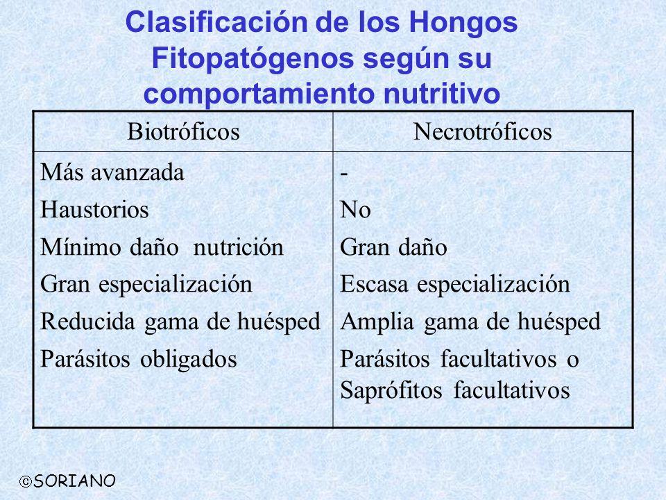 BiotróficosNecrotróficos Más avanzada Haustorios Mínimo daño nutrición Gran especialización Reducida gama de huésped Parásitos obligados - No Gran dañ