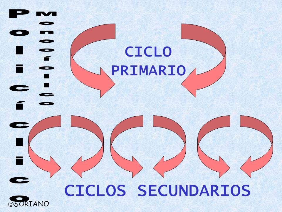 CICLO PRIMARIO CICLOS SECUNDARIOS SORIANO