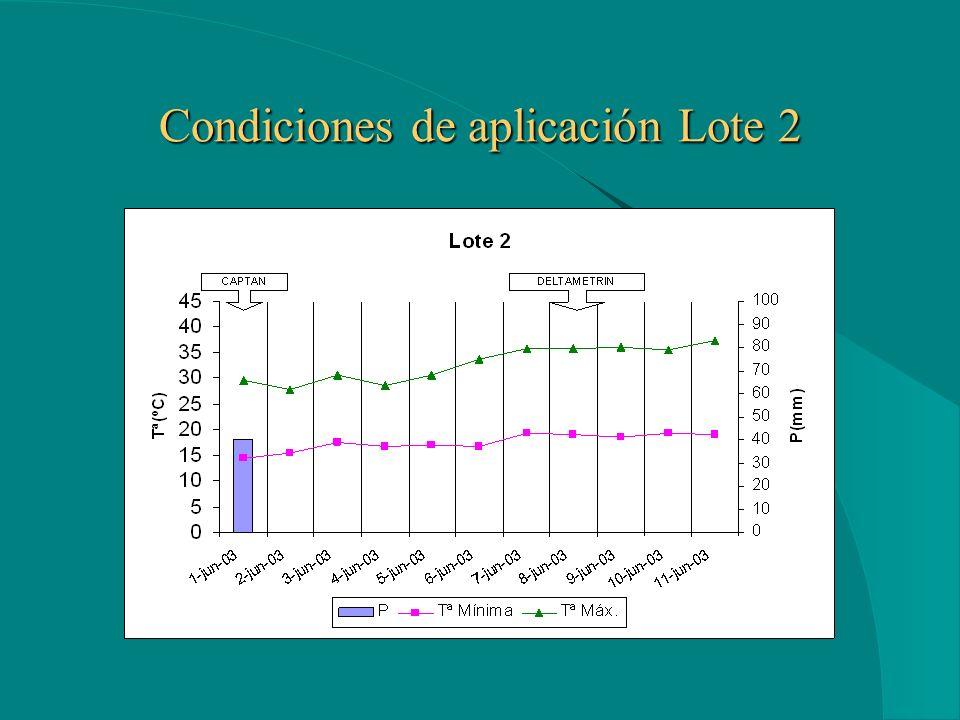 Condiciones de aplicación Lote 1