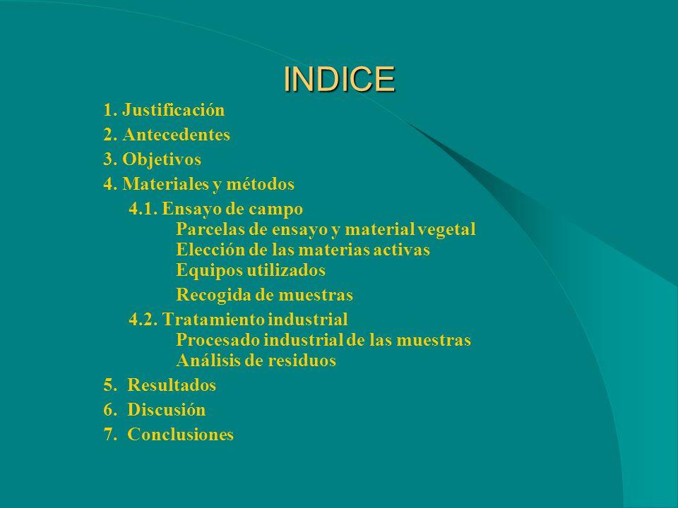 INDICE 1.Justificación 2. Antecedentes 3. Objetivos 4.
