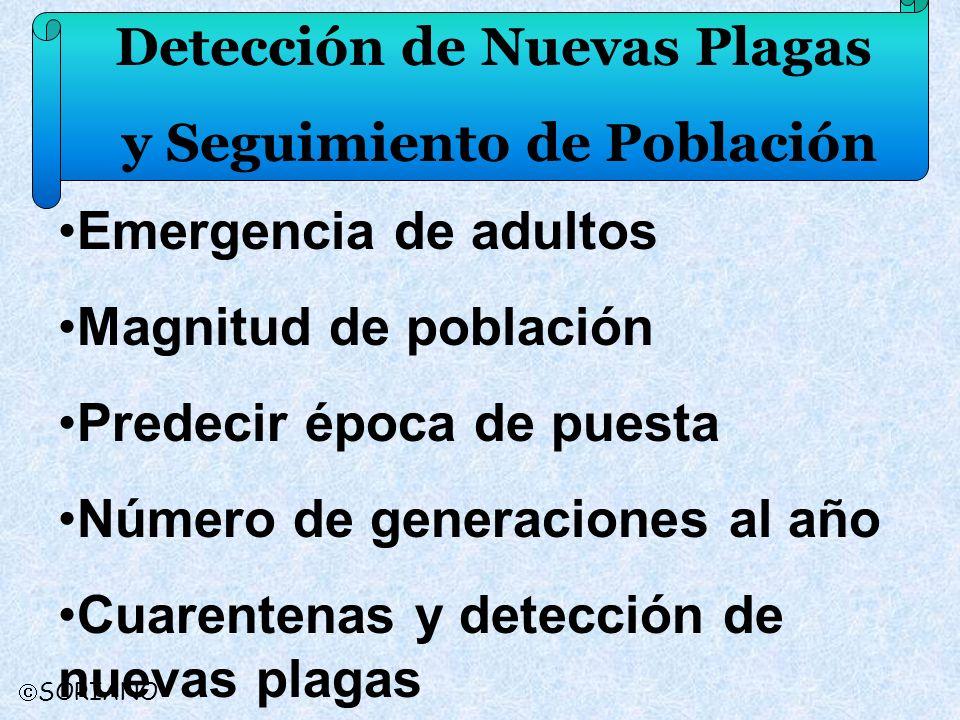 Detección de Nuevas Plagas y Seguimiento de Población SORIANO Emergencia de adultos Magnitud de población Predecir época de puesta Número de generacio