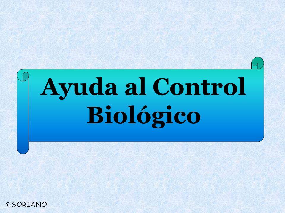 Ayuda al Control Biológico SORIANO