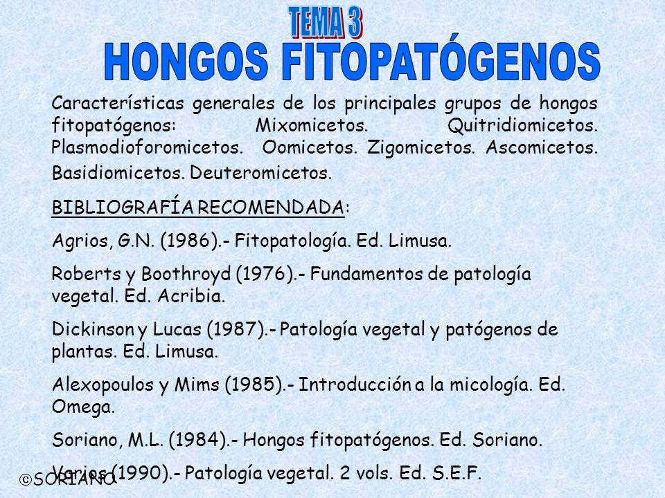 Características generales de los principales grupos de hongos fitopatógenos: Mixomicetos. Quitridiomicetos. Plasmodioforomicetos. Oomicetos. Zigomicet