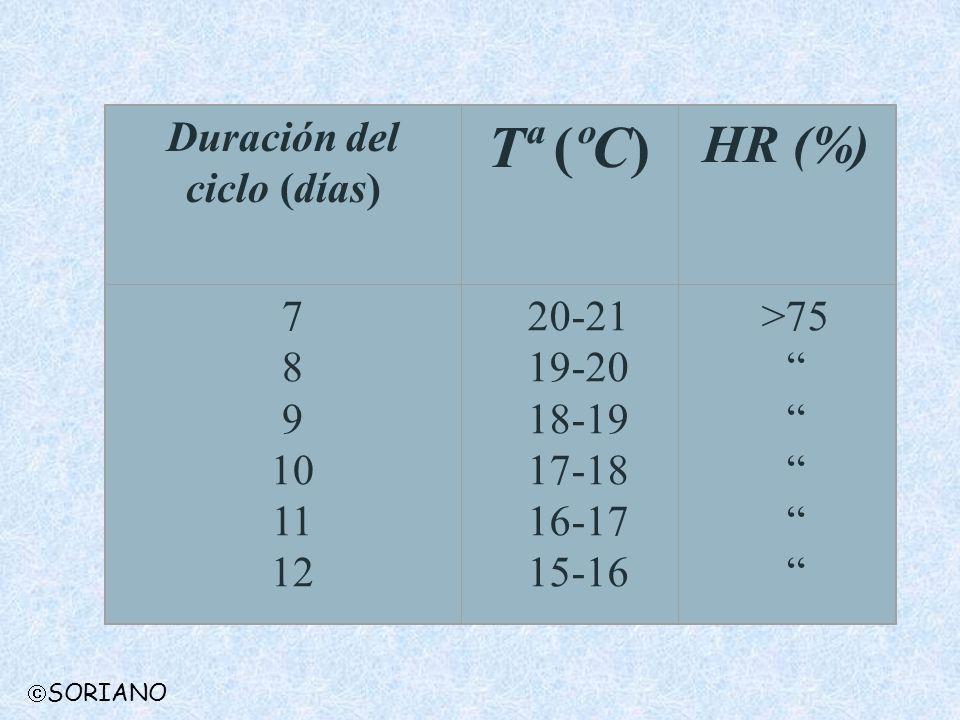 Duración del ciclo (días) Tª (ºC) HR (%) 7 8 9 10 11 12 20-21 19-20 18-19 17-18 16-17 15-16 >75 SORIANO