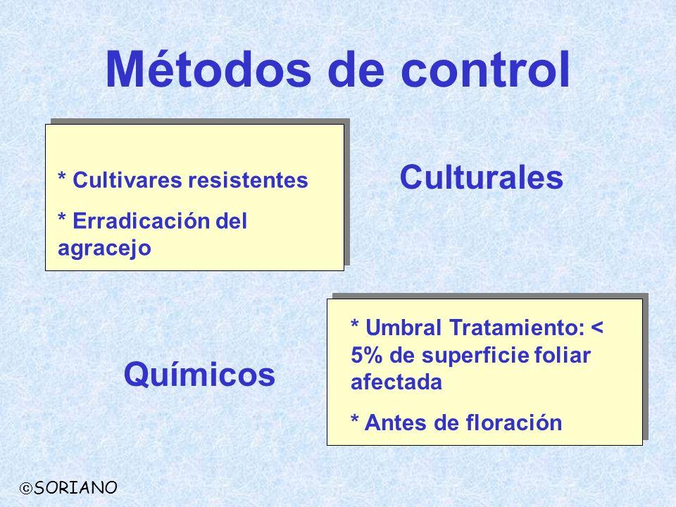 Métodos de control SORIANO * Cultivares resistentes * Erradicación del agracejo Culturales * Umbral Tratamiento: < 5% de superficie foliar afectada *