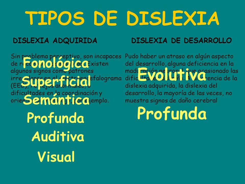 TIPOS DE DISLEXIA DISLEXIA ADQUIRIDADISLEXIA DE DESARROLLO Sin problema perceptivo, son incapaces de reconocer las palabras. Existen algunos signos co