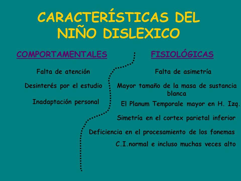 CARACTERÍSTICAS DEL NIÑO DISLEXICO COMPORTAMENTALESFISIOLÓGICAS Falta de atención Desinterés por el estudio Inadaptación personal Falta de asimetría M