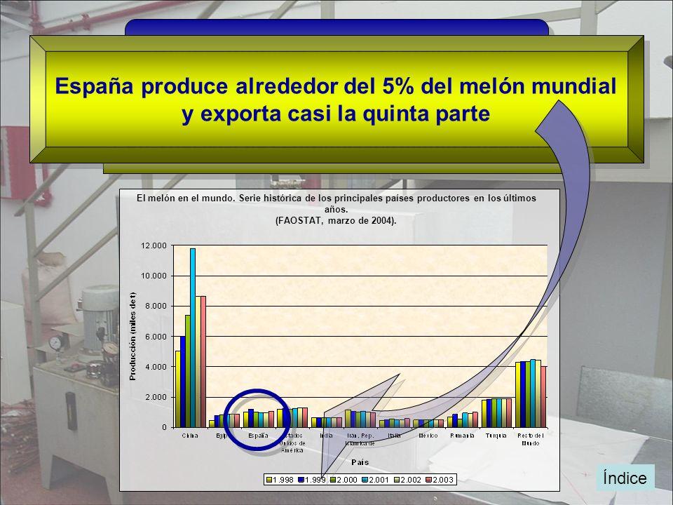 Índice El melón en el mundo. Serie histórica de los principales países productores en los últimos años. (FAOSTAT, marzo de 2004). China, Turquía, EE.U