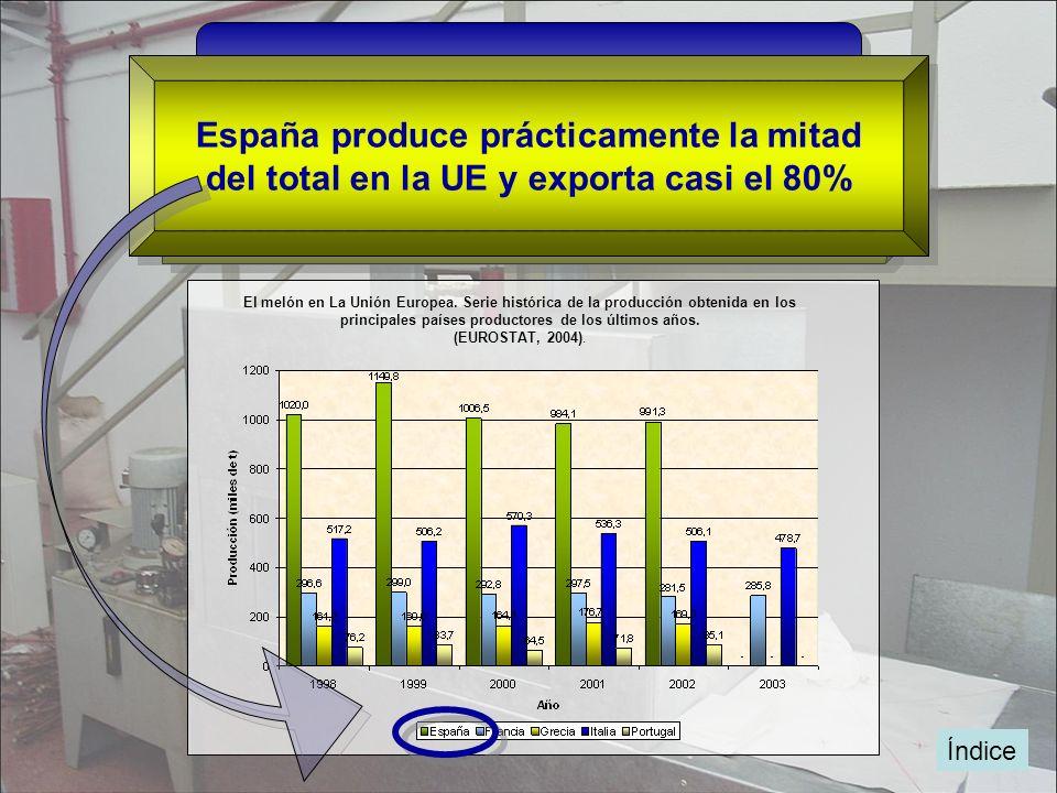 Índice España, Italia, Francia, Grecia y Portugal Principales países productores de melón en la UE España produce prácticamente la mitad del total en