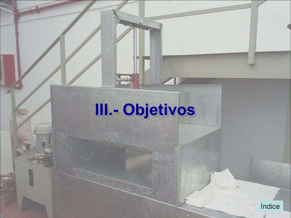 III.- Objetivos