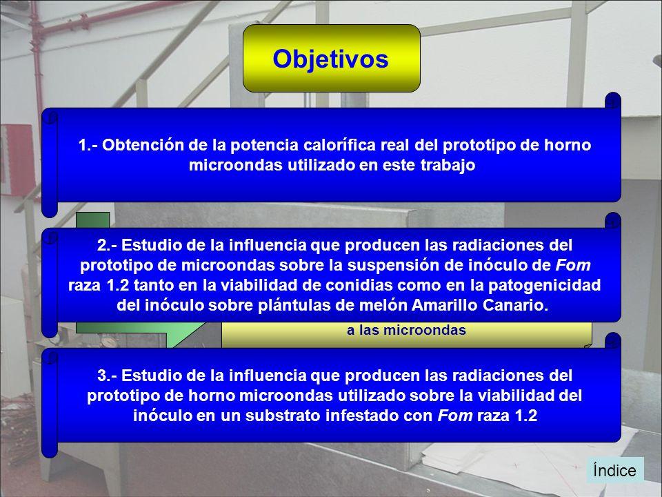 Objetivos 1.- Obtención de la potencia calorífica real del prototipo de horno microondas utilizado en este trabajo Obtener datos de energías aplicadas