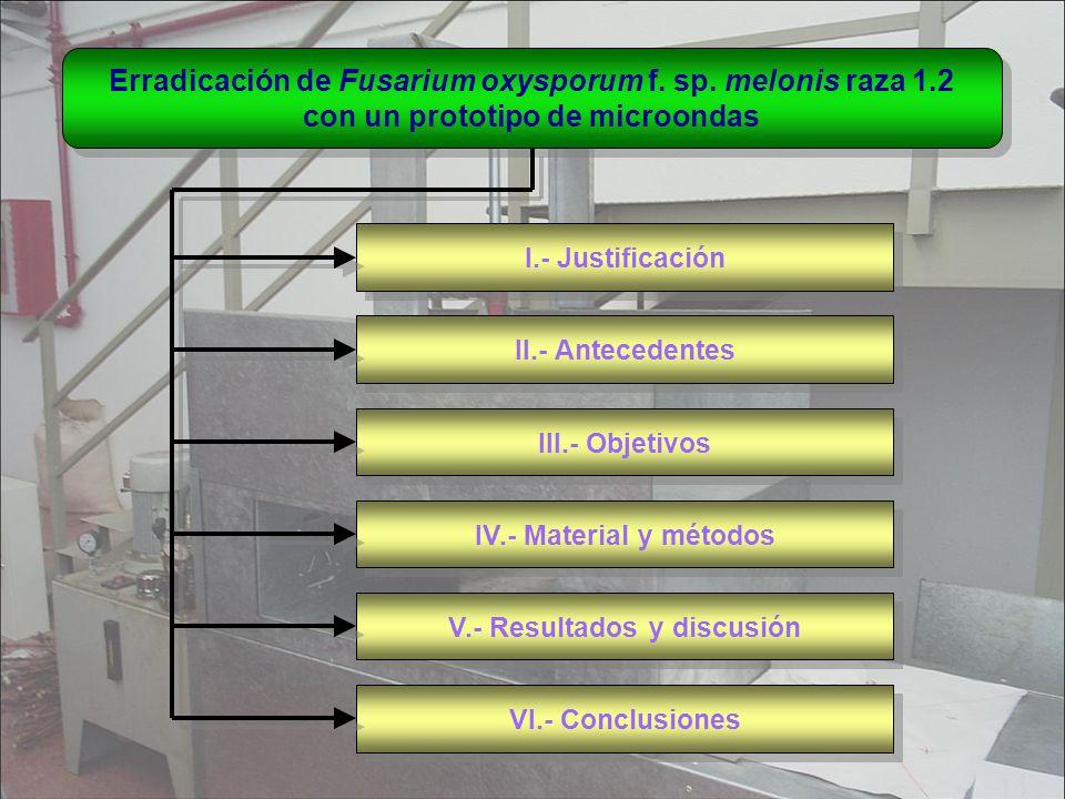 Erradicación de Fusarium oxysporum f. sp. melonis raza 1.2 con un prototipo de microondas Erradicación de Fusarium oxysporum f. sp. melonis raza 1.2 c