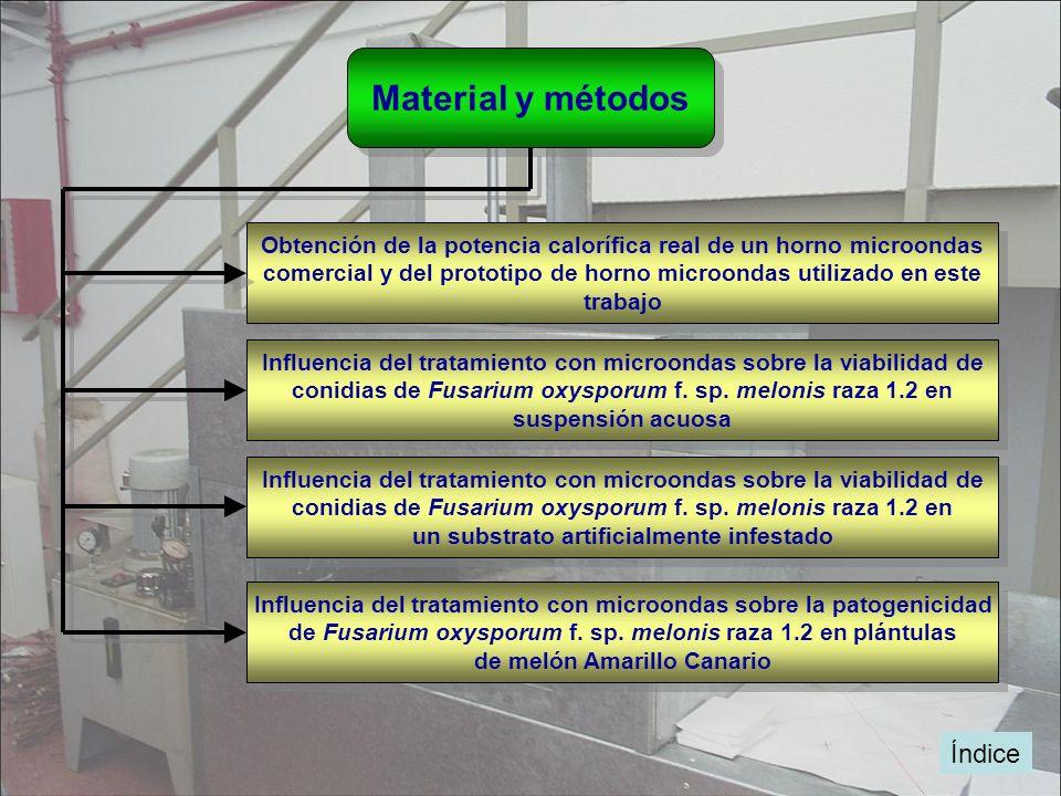 Material y métodos Obtención de la potencia calorífica real de un horno microondas comercial y del prototipo de horno microondas utilizado en este tra