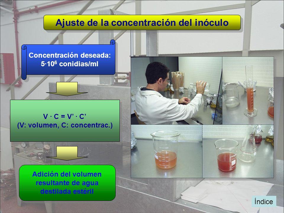 Índice Ajuste de la concentración del inóculo Adición del volumen resultante de agua destilada estéril Adición del volumen resultante de agua destilad