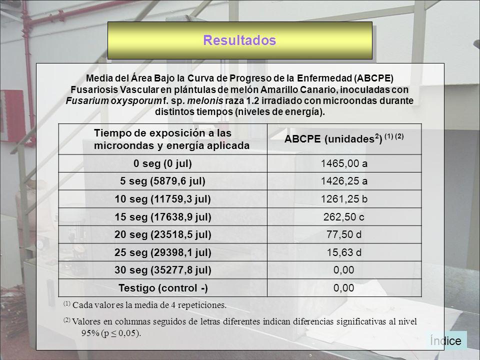 Índice Media del Área Bajo la Curva de Progreso de la Enfermedad (ABCPE) Fusariosis Vascular en plántulas de melón Amarillo Canario, inoculadas con Fu