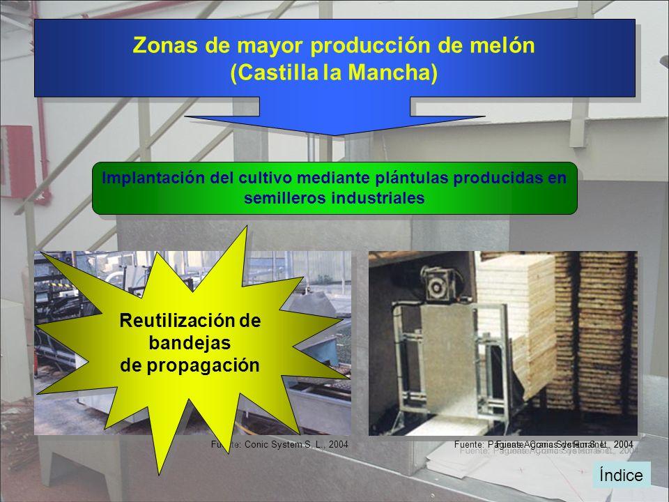 Índice Zonas de mayor producción de melón (Castilla la Mancha) Zonas de mayor producción de melón (Castilla la Mancha) Implantación del cultivo median