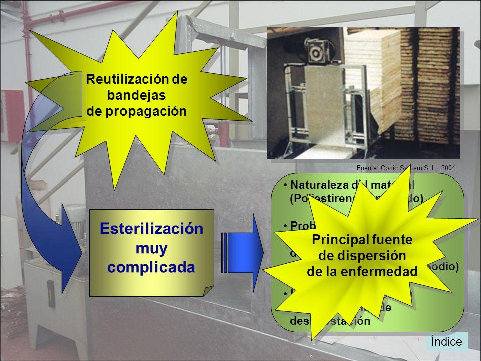 Esterilización muy complicada Esterilización muy complicada Fuente: Conic System S. L., 2004 Reutilización de bandejas de propagación Reutilización de