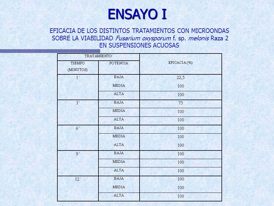 ENSAYO I
