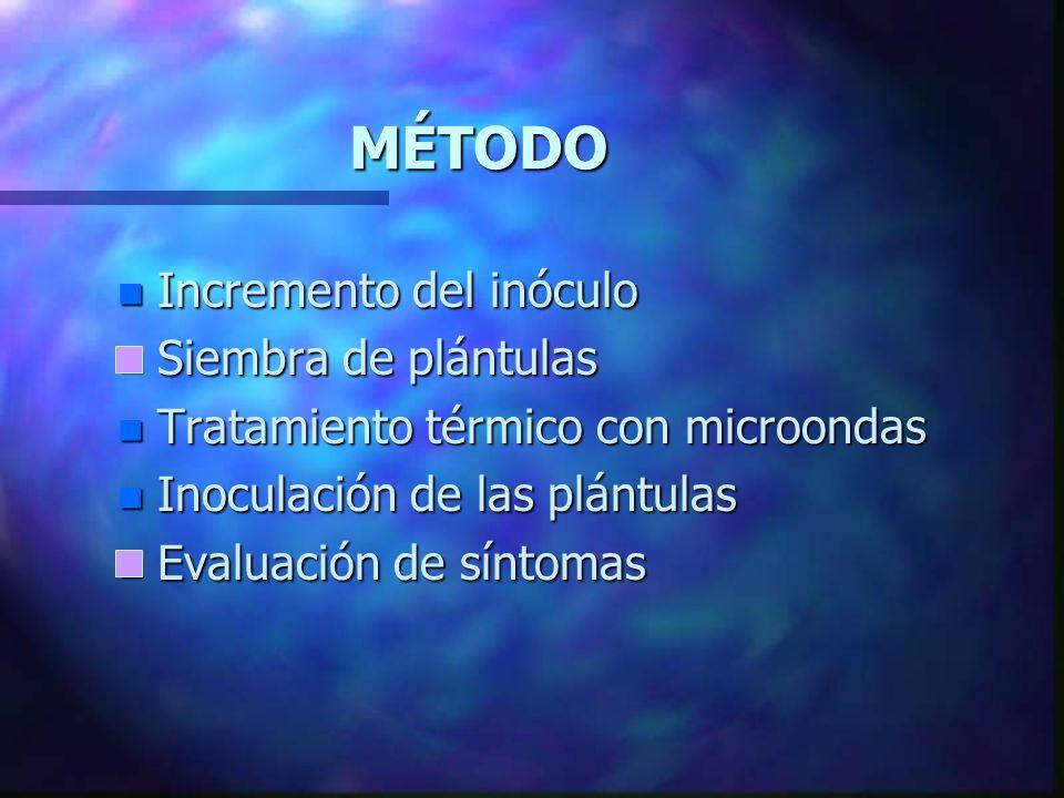n Estudio de la influencia del tratamiento con microondas sobre la patogenicidad de Fusarium oxysporum f. sp. melonis raza 2 en plántulas de melón Ama