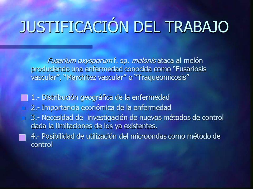 JUSTIFICACIÓN DEL TRABAJO Fusarium oxysporum f.sp.