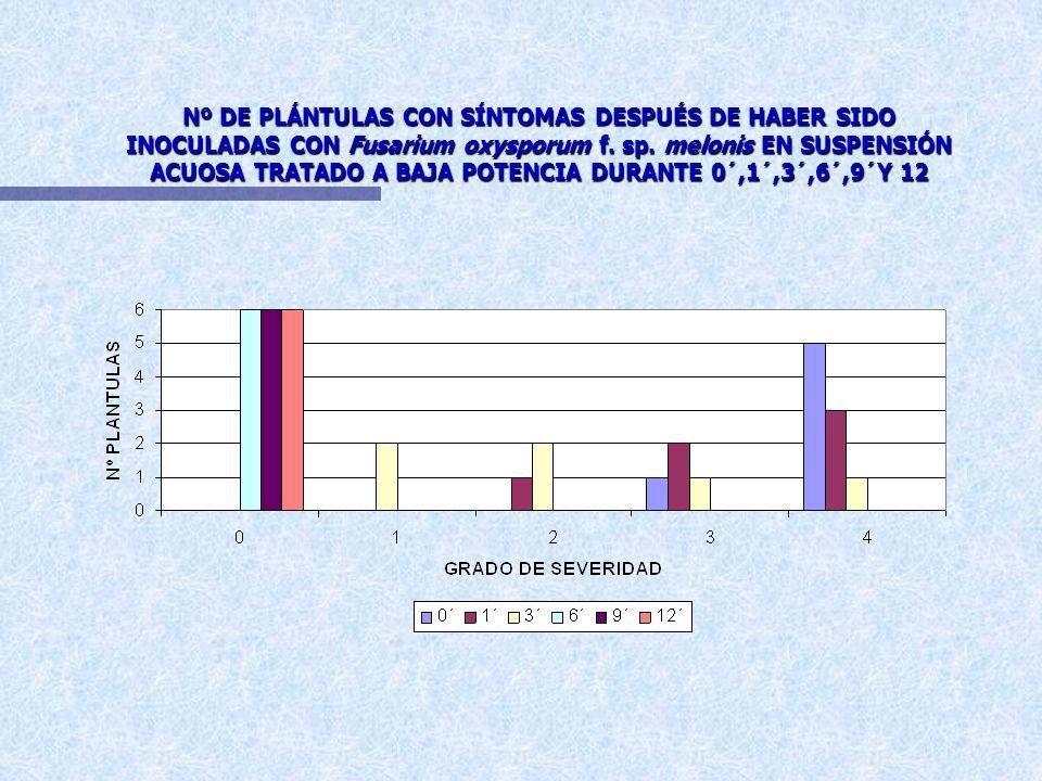 SEVERIDAD DE LA FUSARIOSIS VASCULAR EN PLÁNTULAS DE MELÓN AMARILLO CANARIO INOCULADAS CON CONIDIAS DE Fusarium oxysporum f. sp. melonis A LOS 17 DIAS
