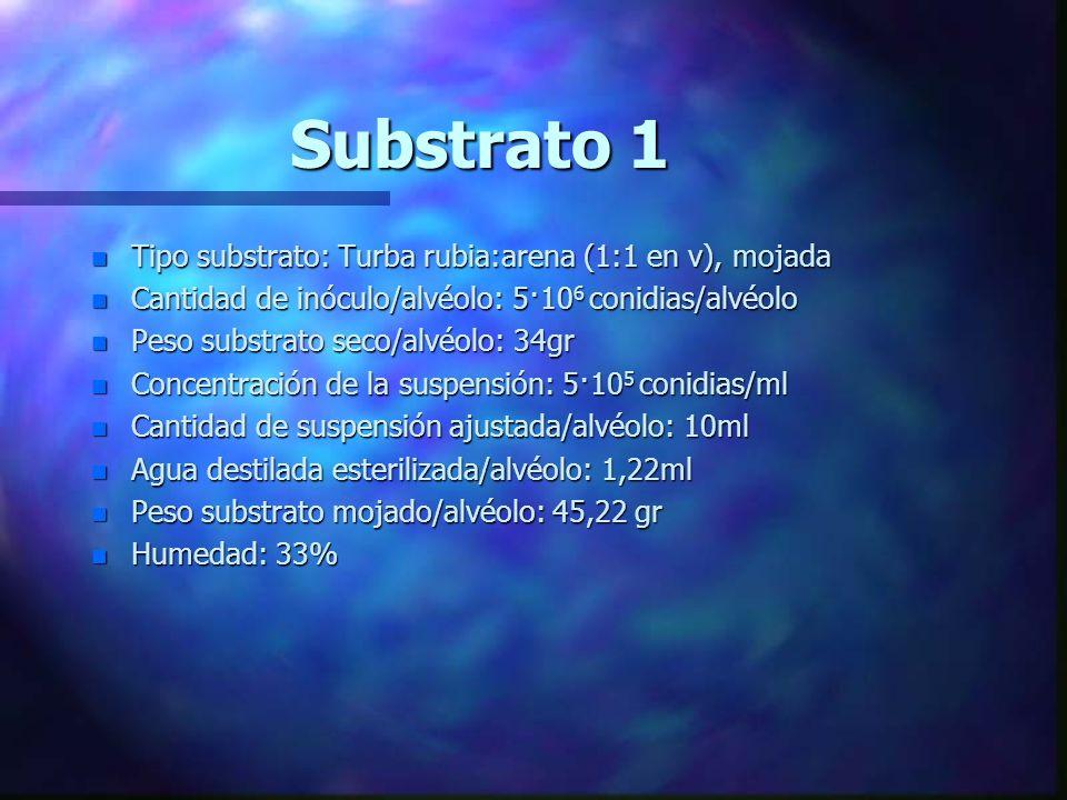 Método: Infestación del substrato n El substrato es esterilizado en autoclave durante 2 días seguidos aplicando cada día 121ºC, 1kg/cm 2 de presión, d