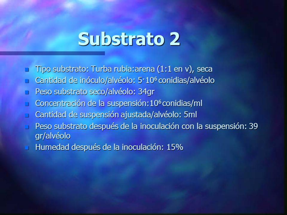 Substrato 1 n Tipo substrato: Turba rubia:arena (1:1 en v), mojada n Cantidad de inóculo/alvéolo: 5·10 6 conidias/alvéolo n Peso substrato seco/alvéol